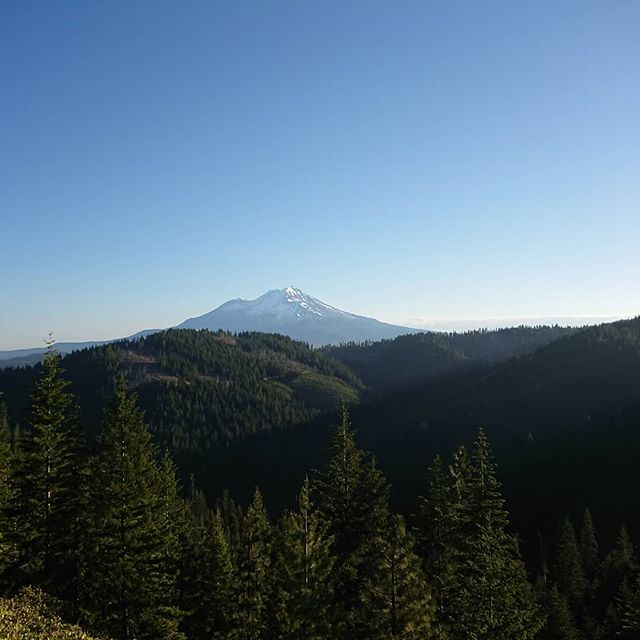 On the PCT you get to see Mount Shasta from a few different angles as the trail almost encircles it. I passed on the south of it before heading in to Mt Shasta.  #pct #pct2018 #hiking #thruhike #thruhiking #thruhiker #backpacking #trekthepct #wehike #mexicotocanada #nature #liveoutdoors #pacificcresttrail