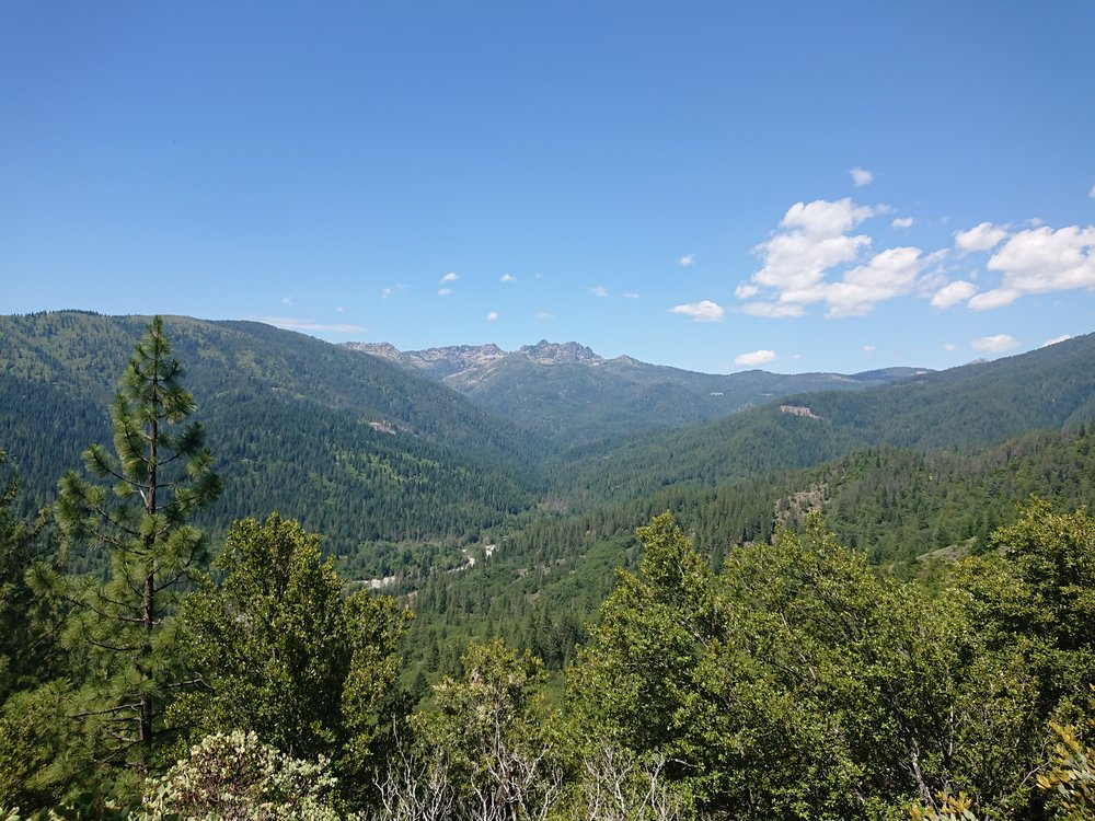 After climbing a bit I started to get done good views of the forested surroundings