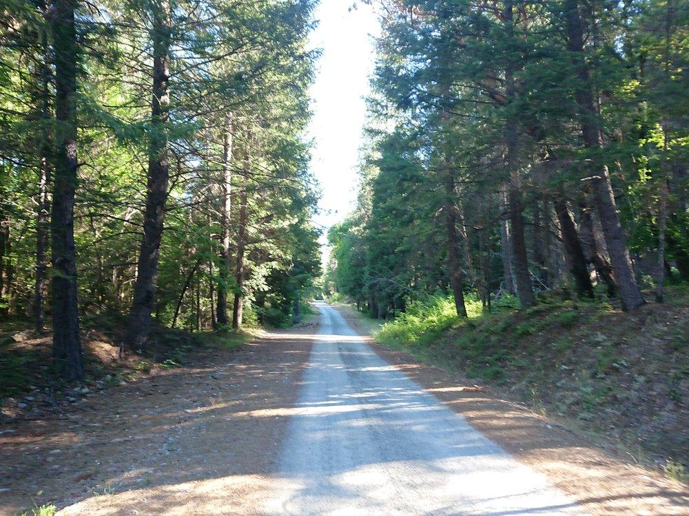 Roadwalking to Seiad Valley
