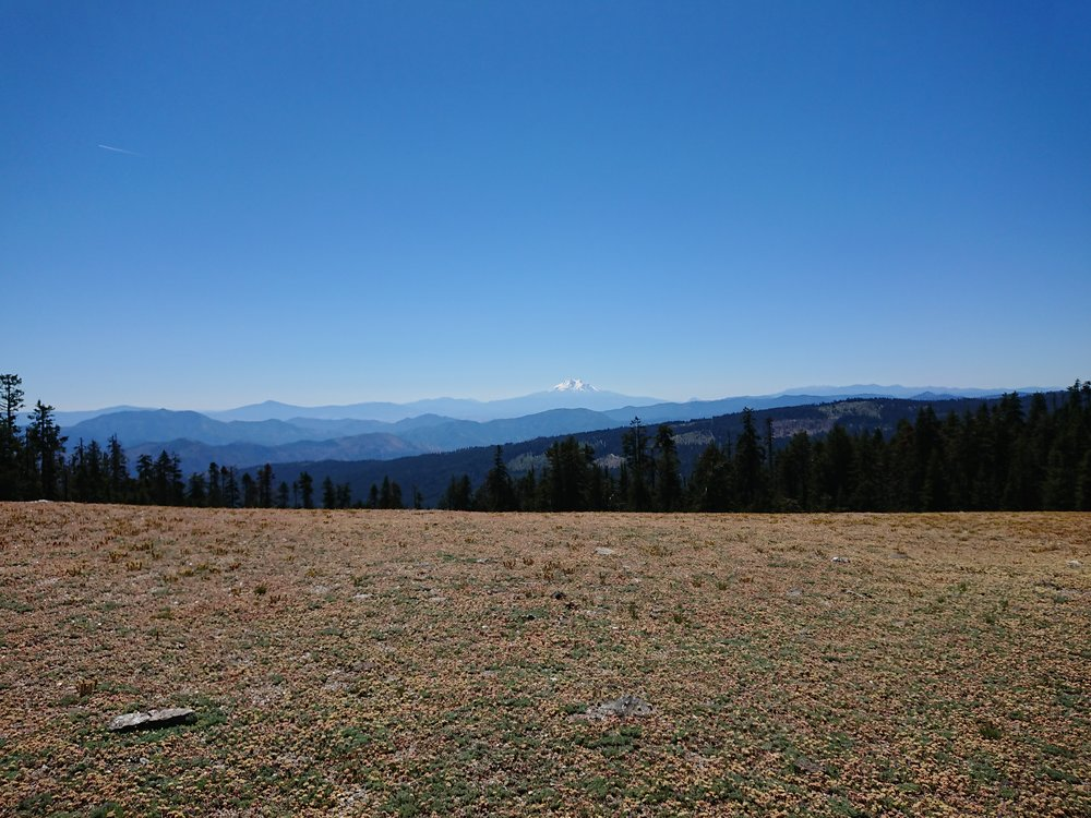 I came upon some big open areas where Mount Shasta was visible