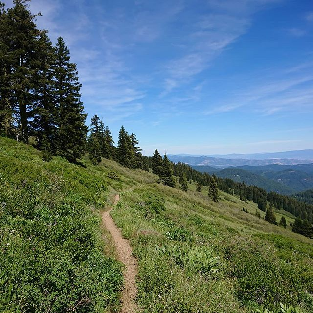 Oregon immediately proves that it is beautiful.  #pct #pct2018 #hiking #thruhike #thruhiking #thruhiker #backpacking #trekthepct #wehike #mexicotocanada #nature #liveoutdoors #pacificcresttrail