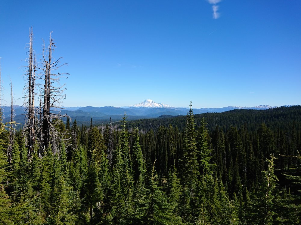 Looking back at Mount Hood I believe