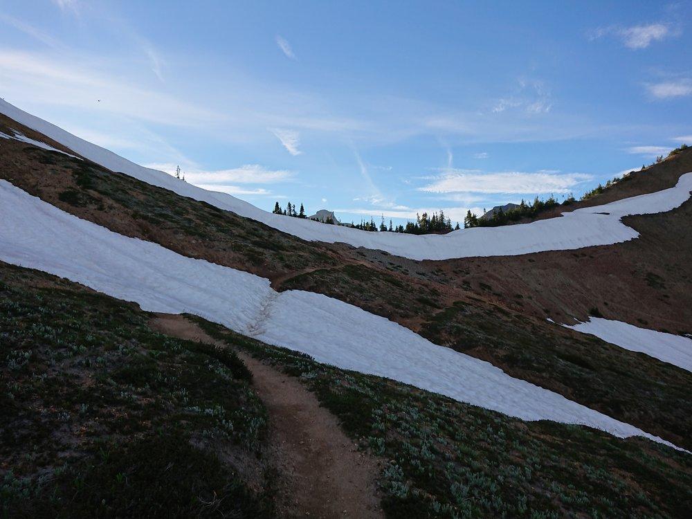 Final climb on snow to Cispus Pass