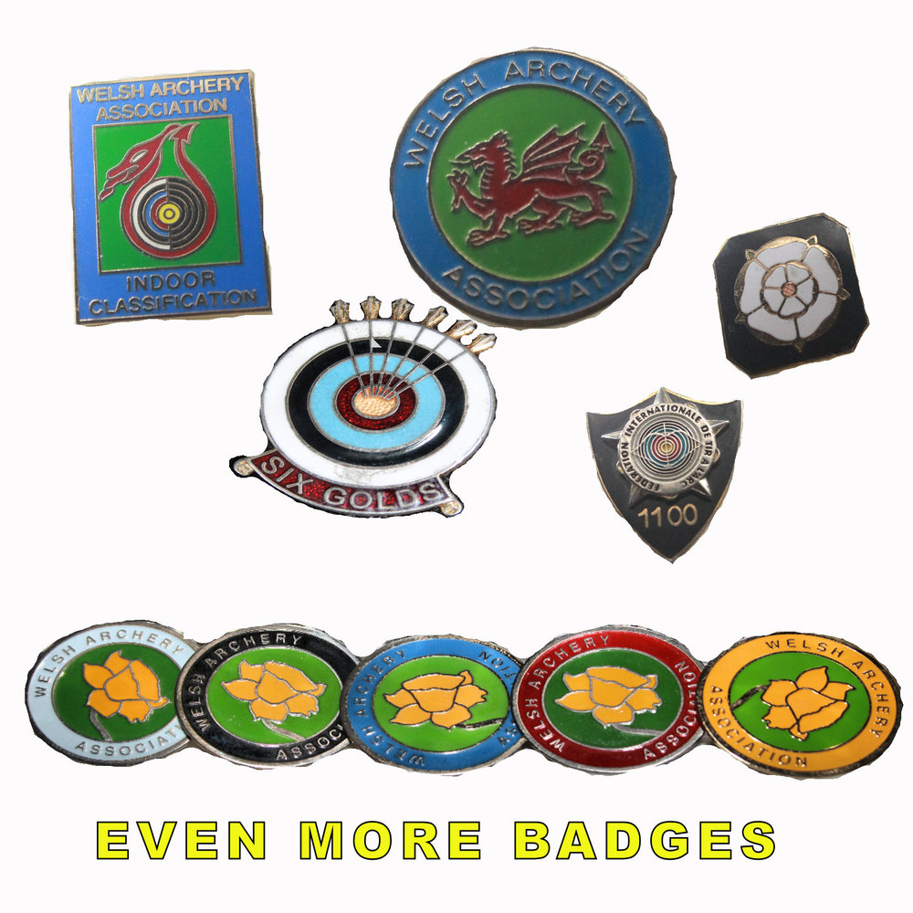 All the other badges you can collect in Archery