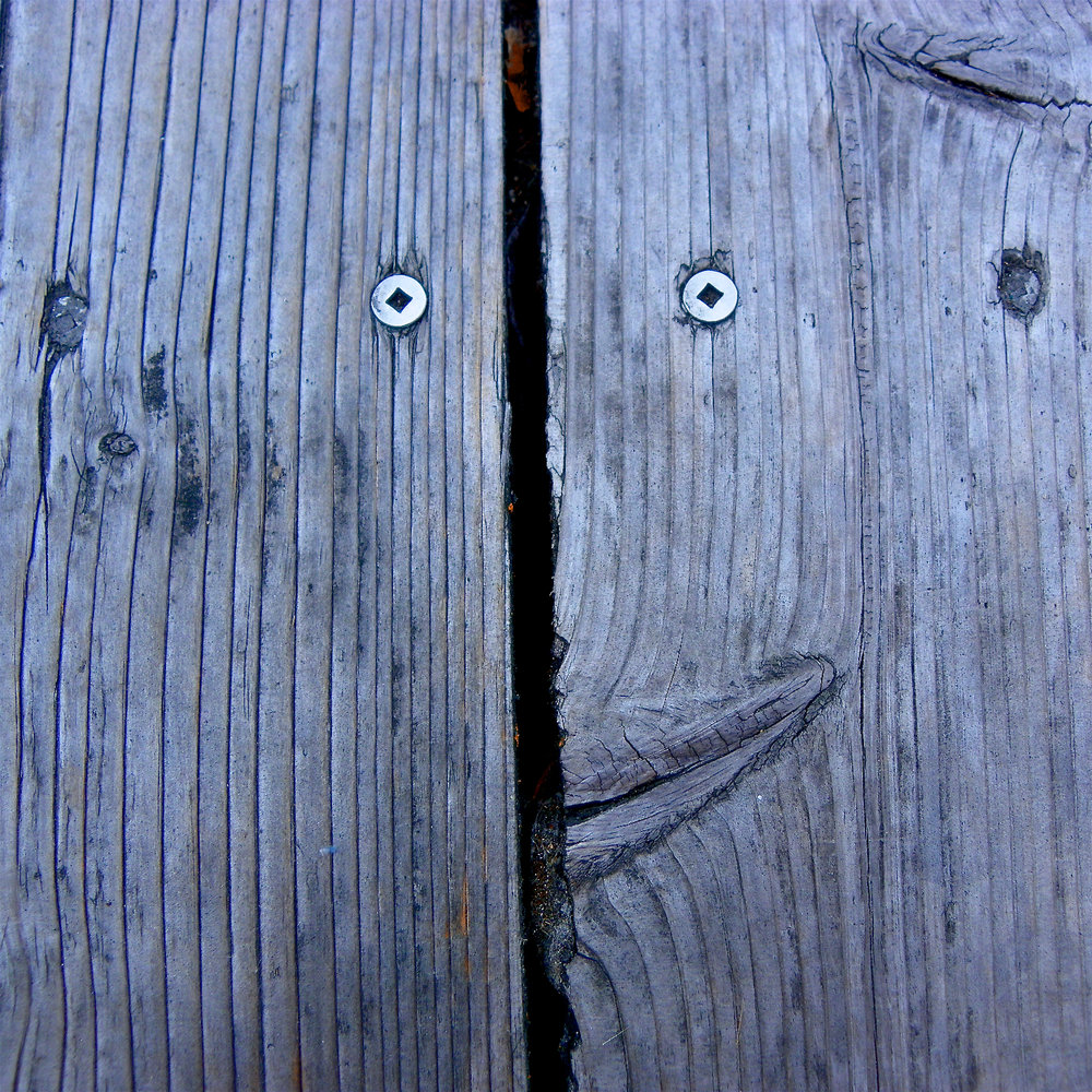 Fence Smiley, 4.jpg