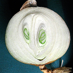 Onion Smiley, 3.jpg
