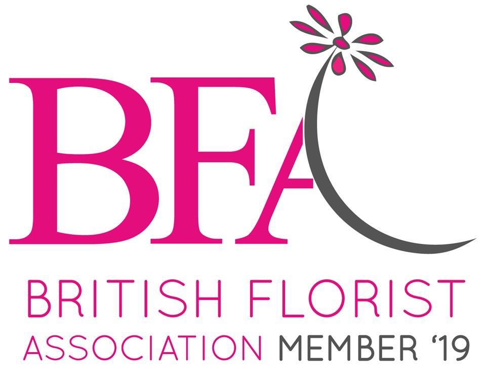 BFA-Member-%2719-high-res.%281%29.jpg