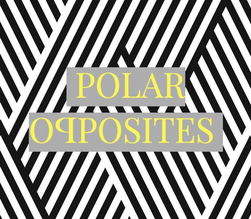 black-and-white-polaropposites-logo.jpg