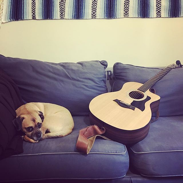 You only need 2 things in life to be happy: #1 A puggle and #2 MUSIC! Come out to #heavyseastaproom in Halethorpe, MD TONIGHT 3pm-10pm for a First Day of Summer BBQ hosted by @heavyseasbeer (we'll bring only one of these things with us, either way, there will be lots of tail-wagging good fun to be had!) #heavyseasbeer #firstdayofsummer #summersolstice #livemusic #baltimorebrews #pugglesofinstagram