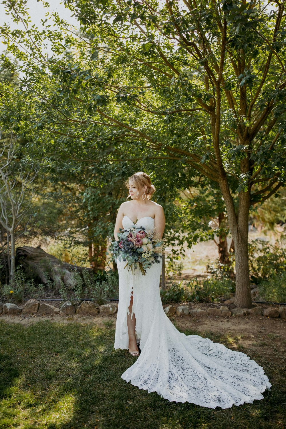 brides in bloom - - view -