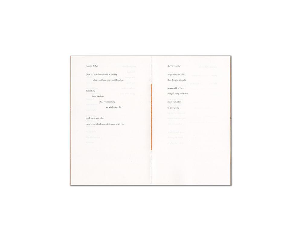 _book_a_wish_3.jpg
