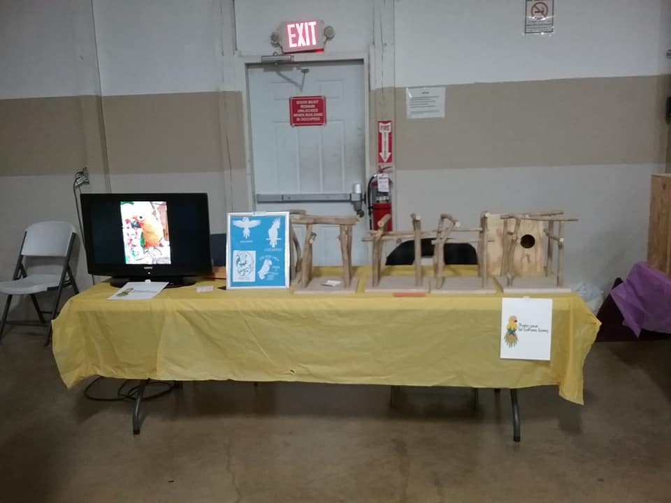 maebs bird fair 2018 table playstands.jpg