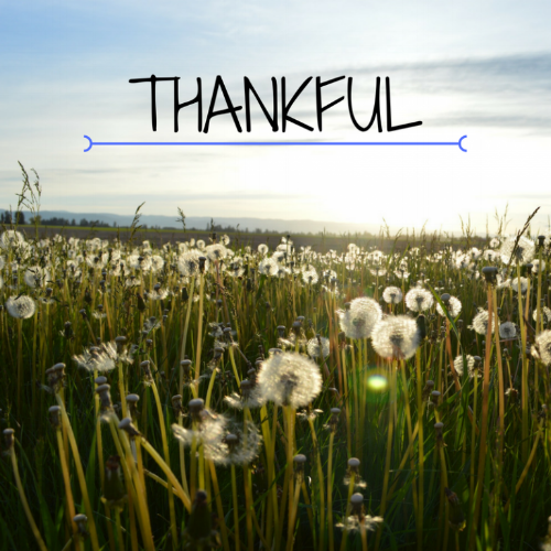 THANKFUL-768x768.png