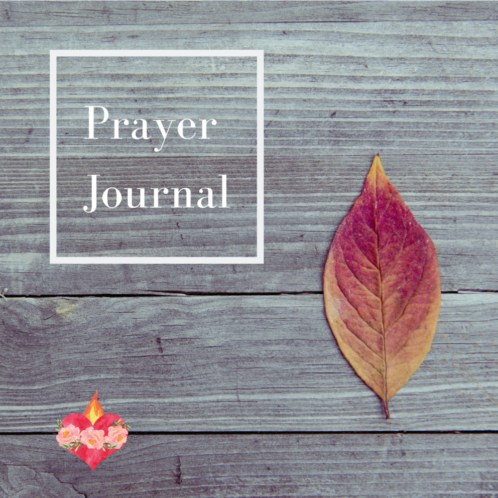 Prayer Journal - Sally.png