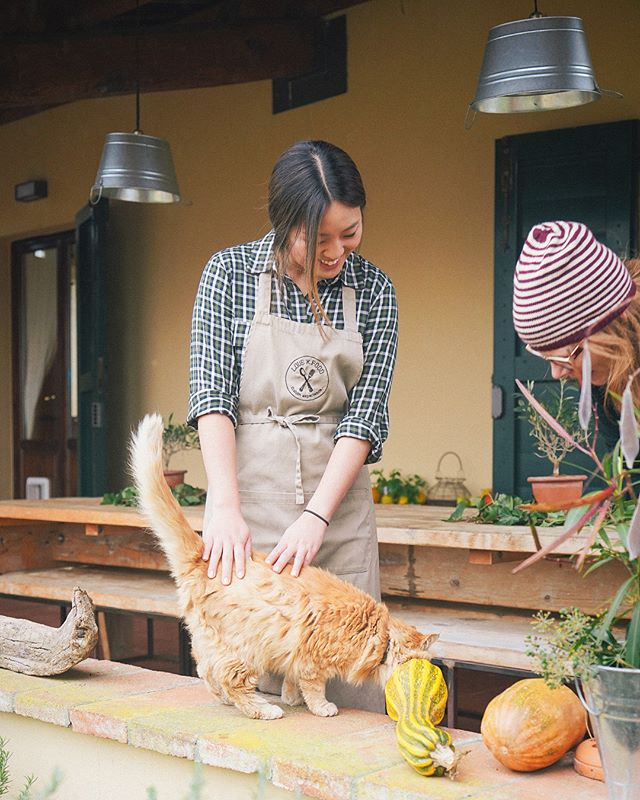 and immersing myself into our pasta making instructors' idyllic lives in tuscany was also a highlight. more on food, love, and italia is up on dear saturdays! 💫