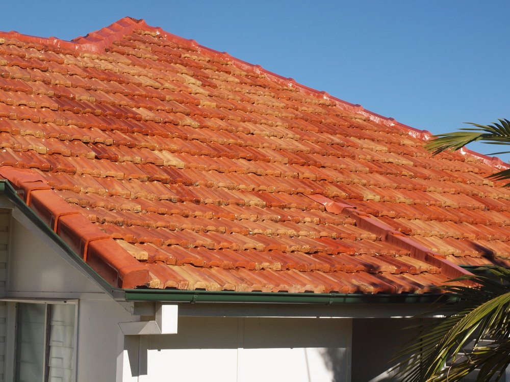 Roof cleaning after.JPG