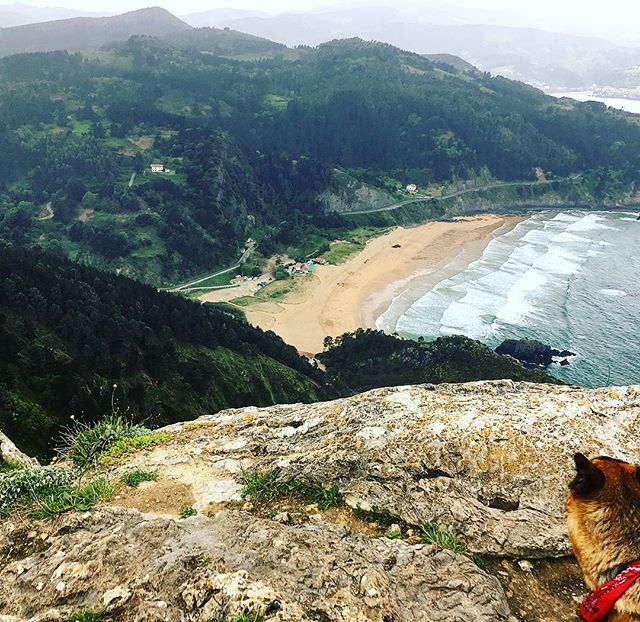 I have discovered trail running and it's AWESOME #trailrunning #mountains #spain #dog #beach #running #fitness