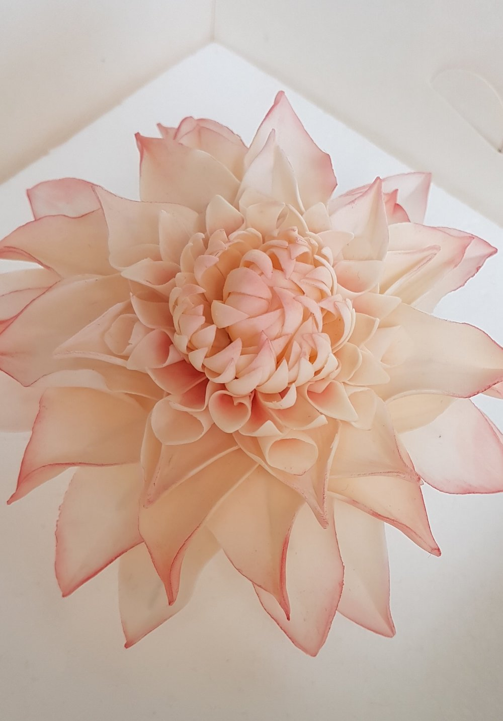 Sugar Crafted Dhalia
