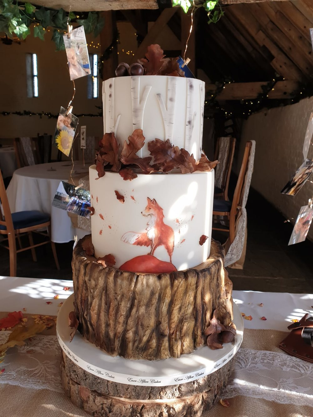 Fox in rustic venue
