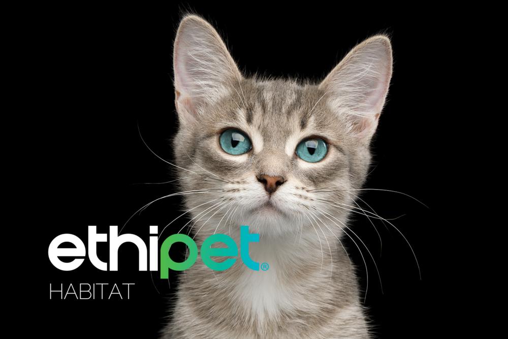 EP Habitat cat.png