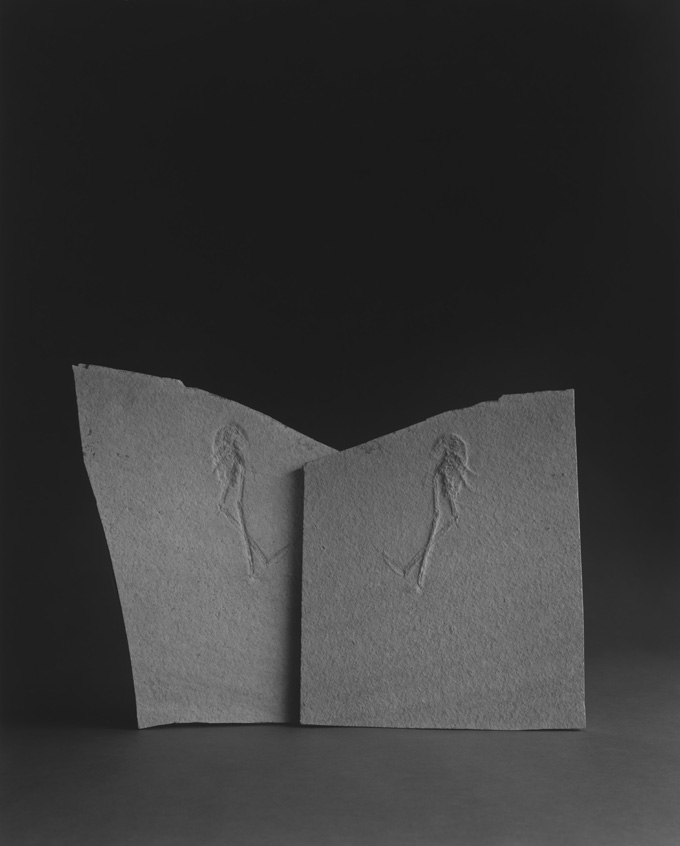 post 3 - Pre-Photography Time-Recording Device (hiroshi sugimoto).jpg