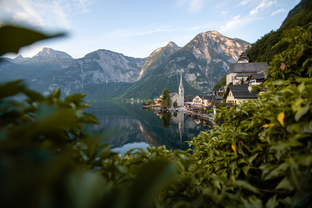 Sometimes you have to shoot the obvious. I tried creating a visual flow through the image using the leaves. - May 30th, 2018 - Hallstatt, Austria -