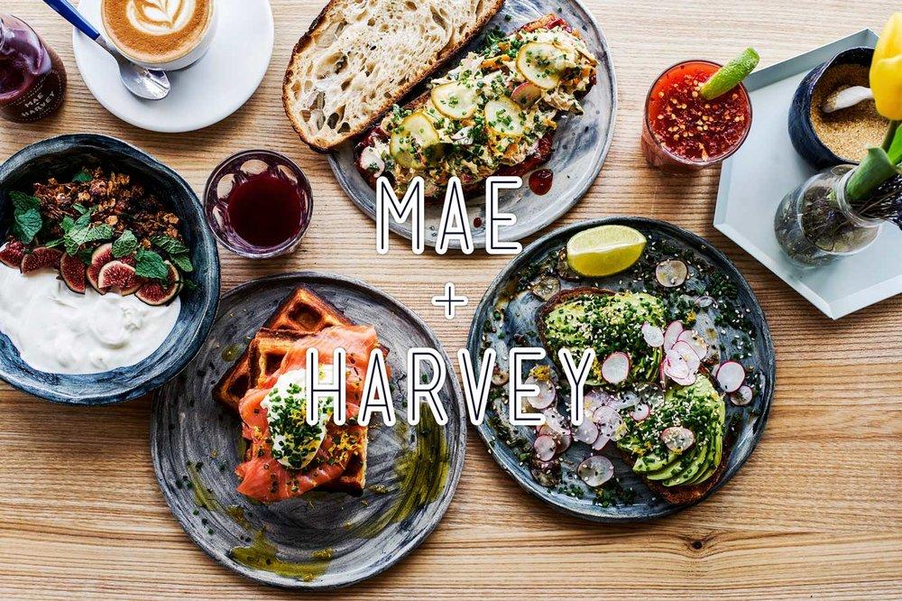 Mae+Harvey-header3x2-op.jpg
