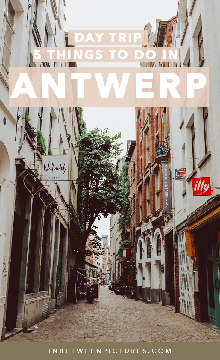 5 Things To Do in Antwerp On a Day Trip