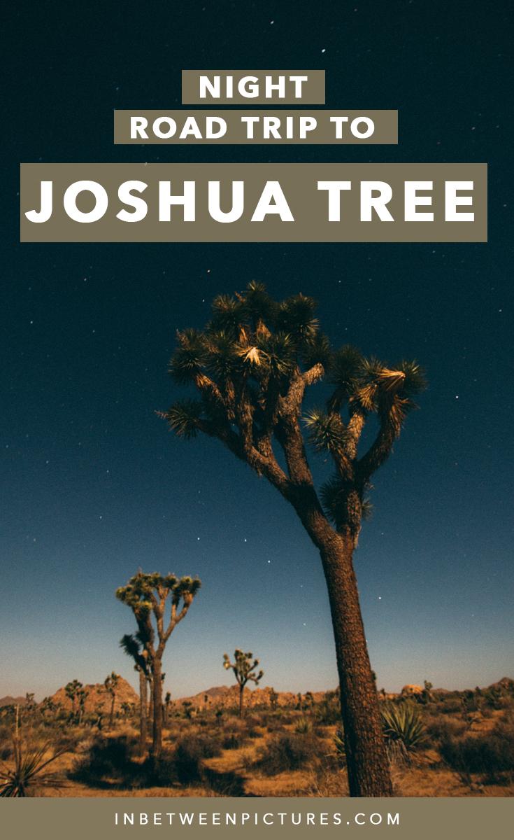 Joshua Tree National Park Night Road Trip