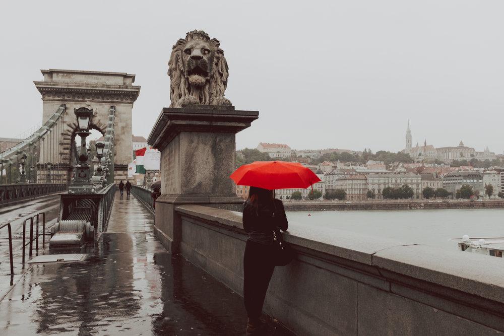 Szechenyi Bridge Budapest Hungary