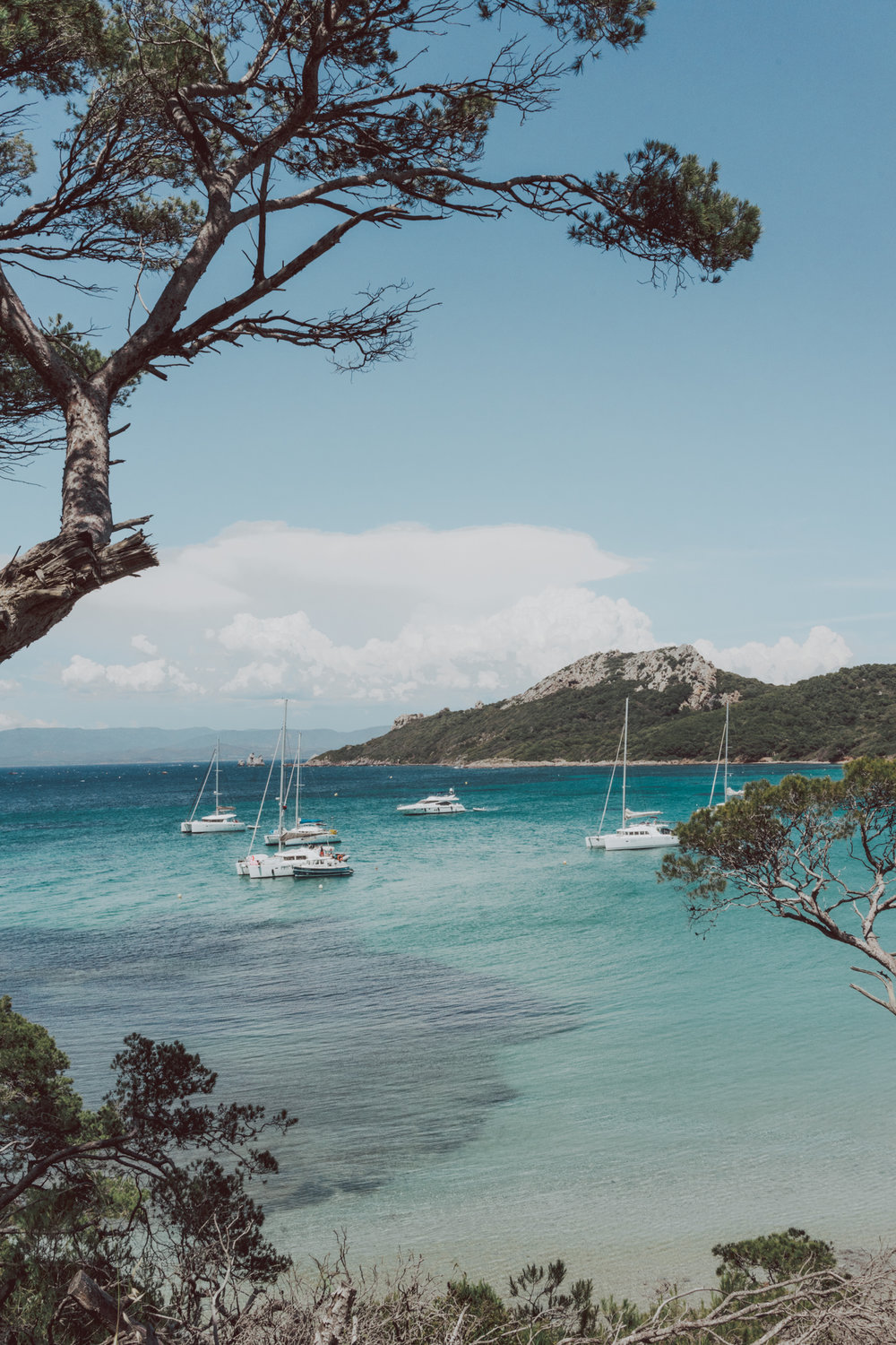 Hyeres Il de Porquerolles Market Beach Giens Things to do in Hyeres South of France - French Rivera #France #Provence #FrenchRivera #CotedAzur