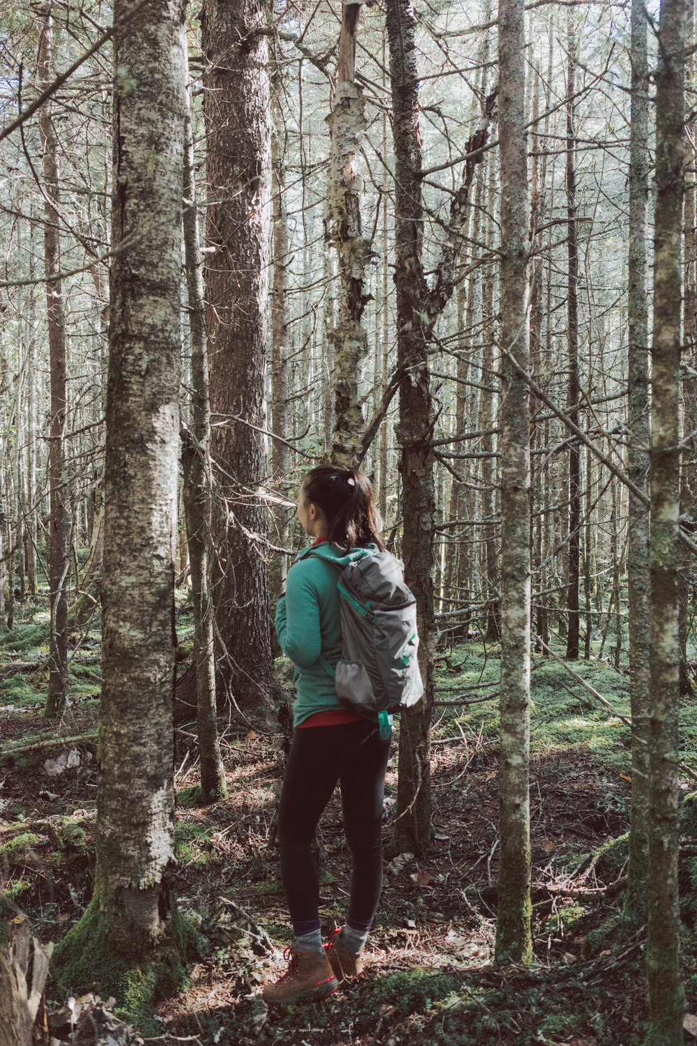 Guide Road Trip in #Maine Things to do - Go on an invigorating hike! The highlight of our trip to Maine was hiking the Fairy Head Trail on the Cutler Coast Public Reserved Land.
