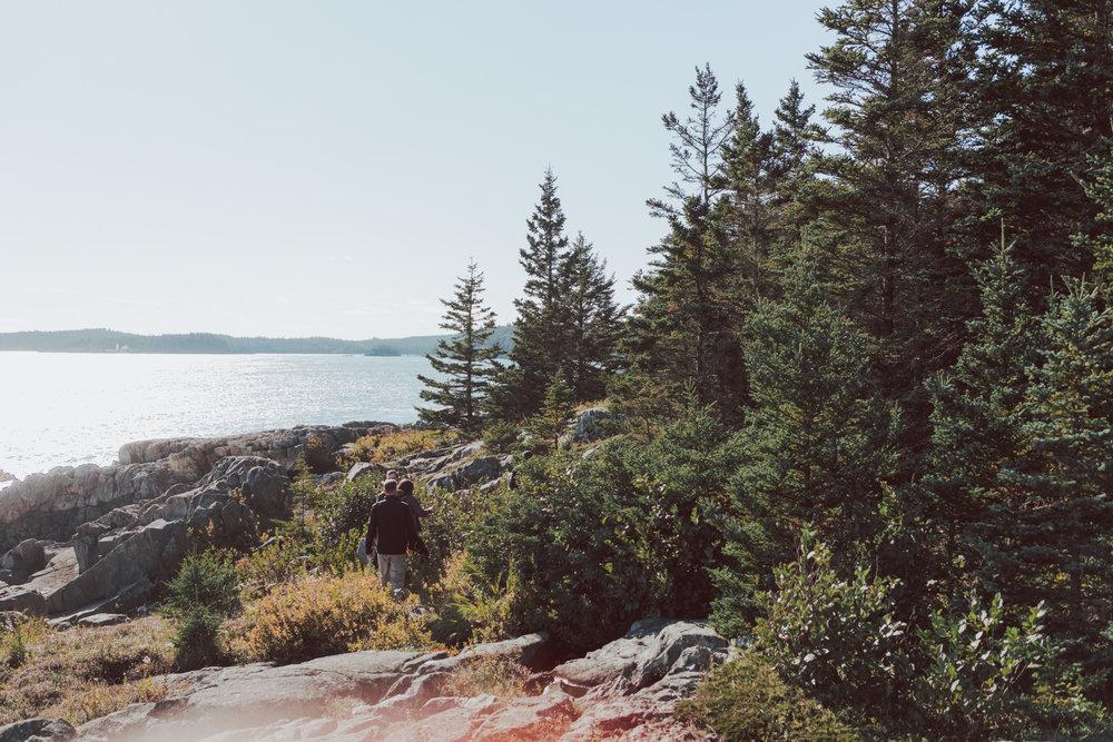 Bold Coast Lubec Maine