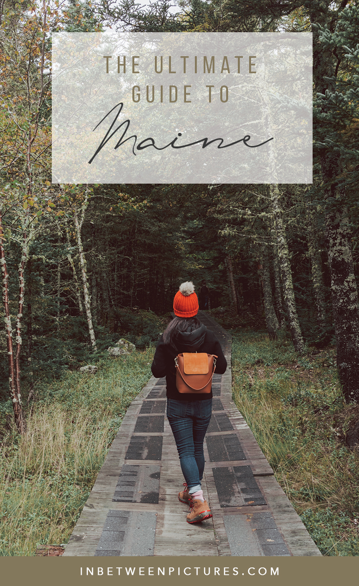 Ultimate Guide to Planning a Trip to Maine in the Fall