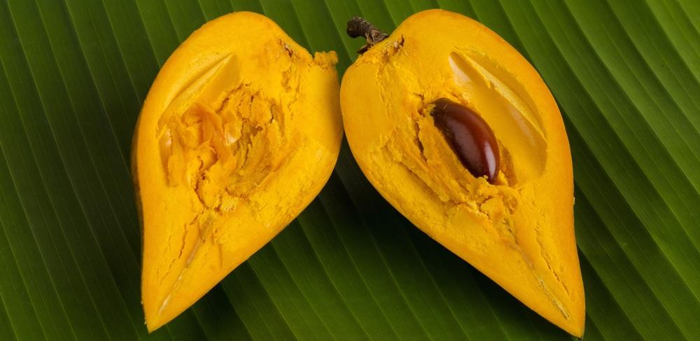 lucuma-fruit.jpg