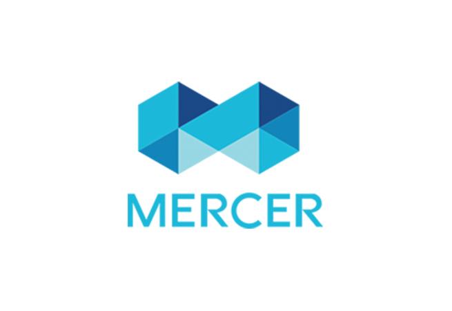 Mercer D&I Technology Report