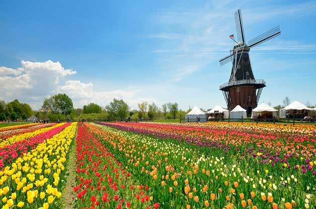 credit: http://www.birdsandblooms.com/gardening/must-see-flower-festivals-2018/