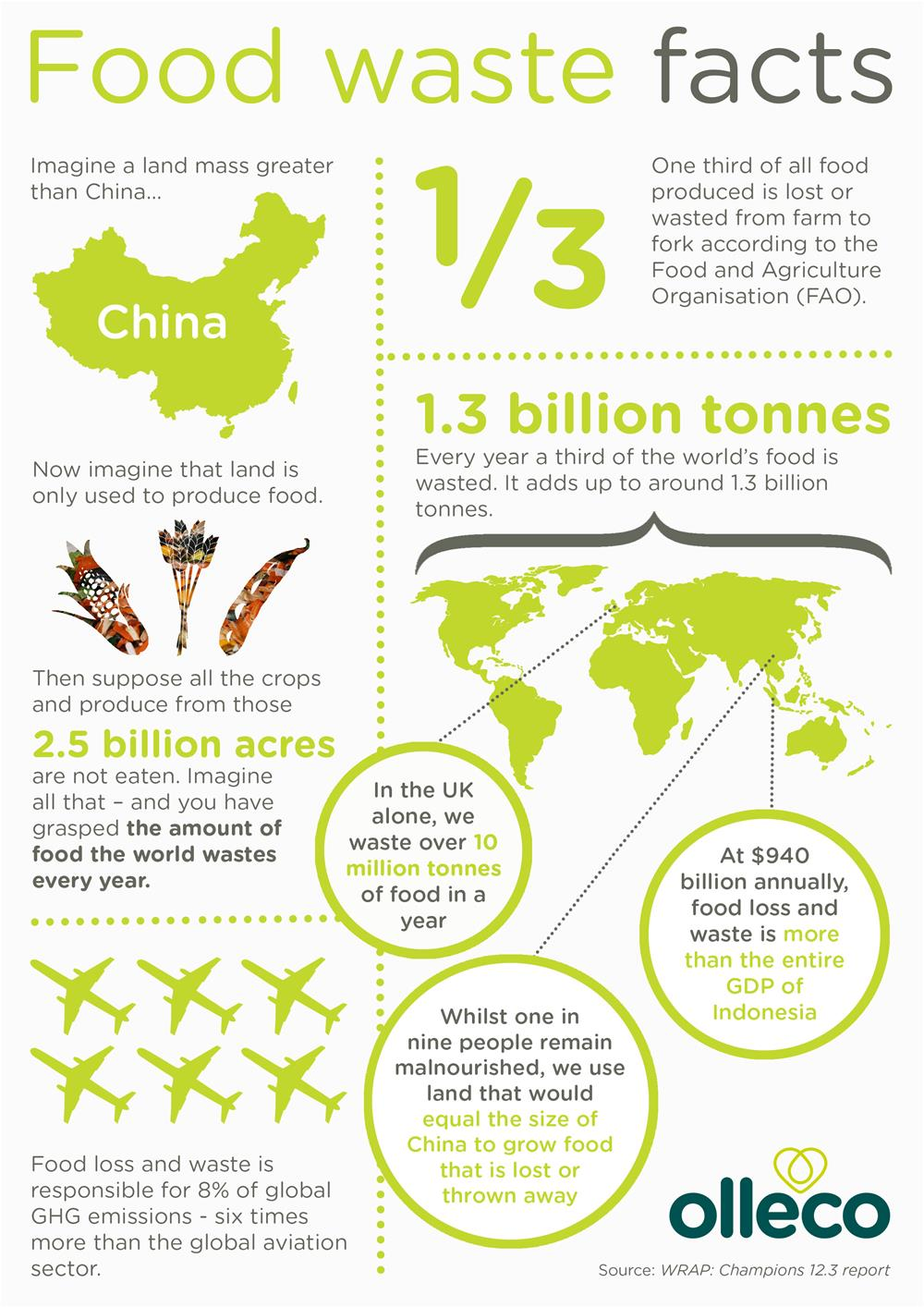 food-waste-facts-20172469ad6b85236d73ad4eff0000124192.jpg