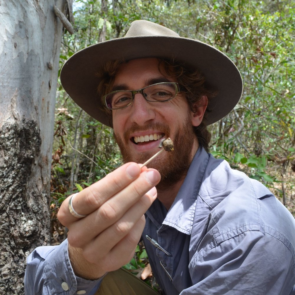 Anthony Schultz - PhD candidateM.Sc. Conservation and Biodiversity, University of ExeterB.Sc. Hons Zoology, University of Cape TownB.Sc. Ecology and Marine Biology, University of Cape TownProject: Social and spatial behaviour of koalas