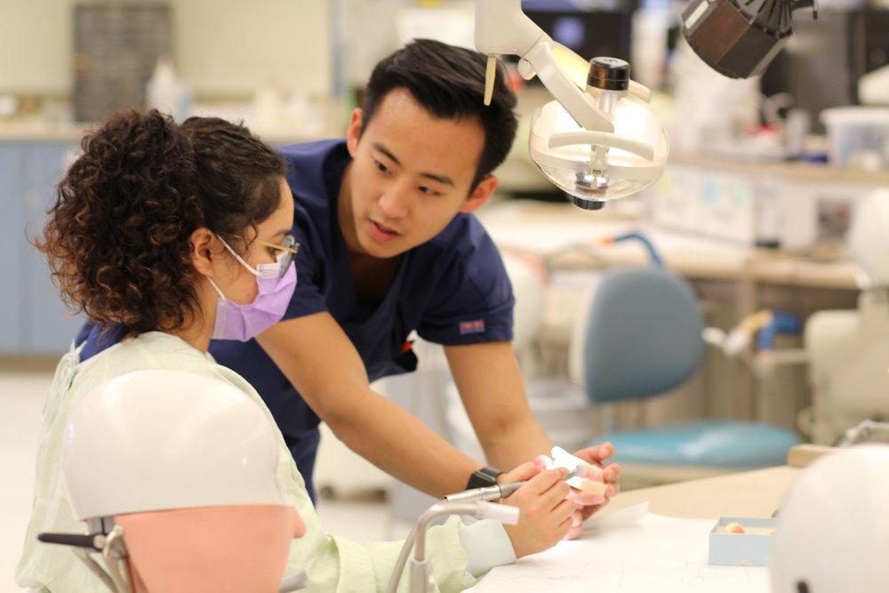 for pre-dentals -