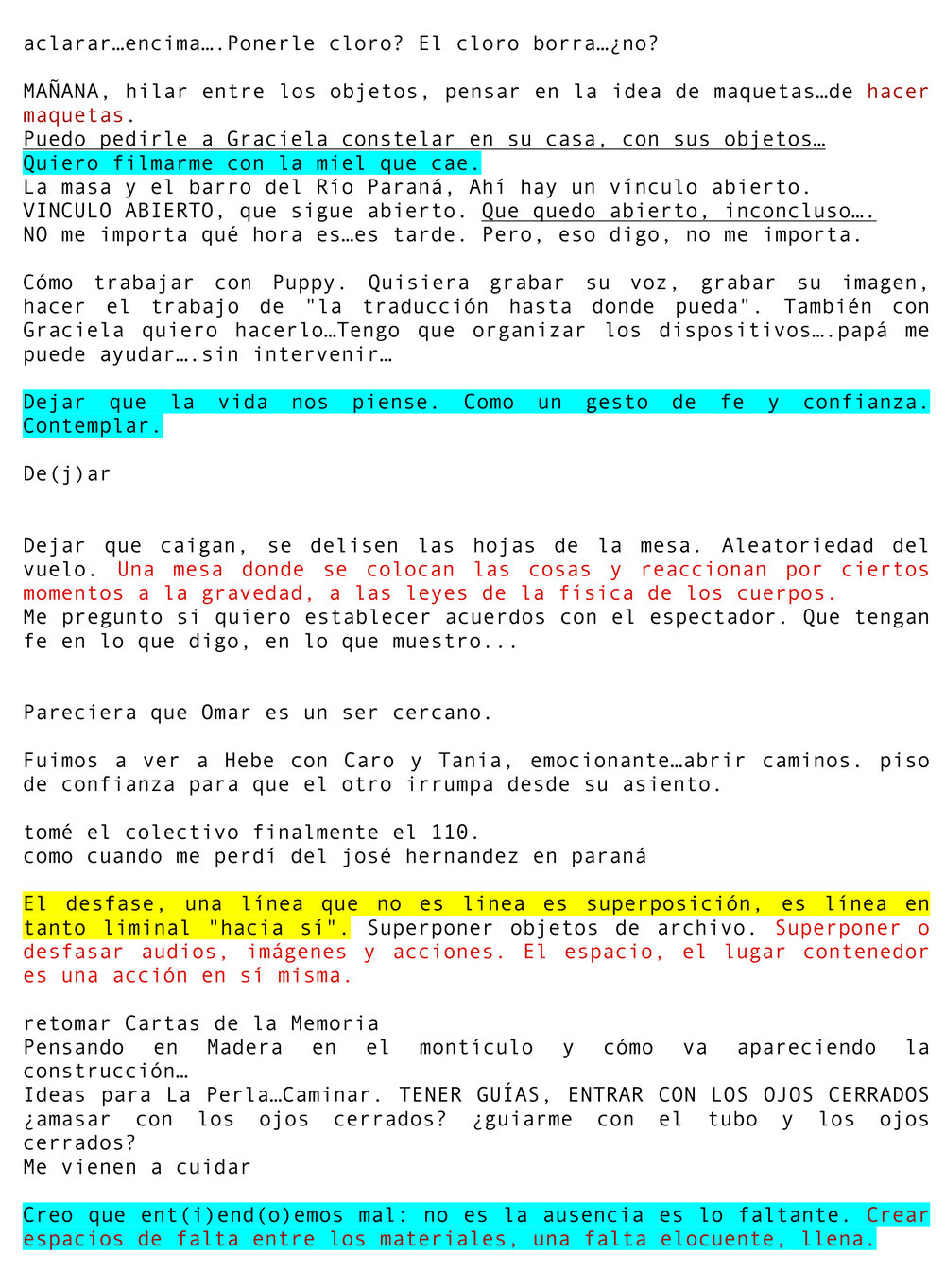 DIARIO_ARGENTINA-2.jpg
