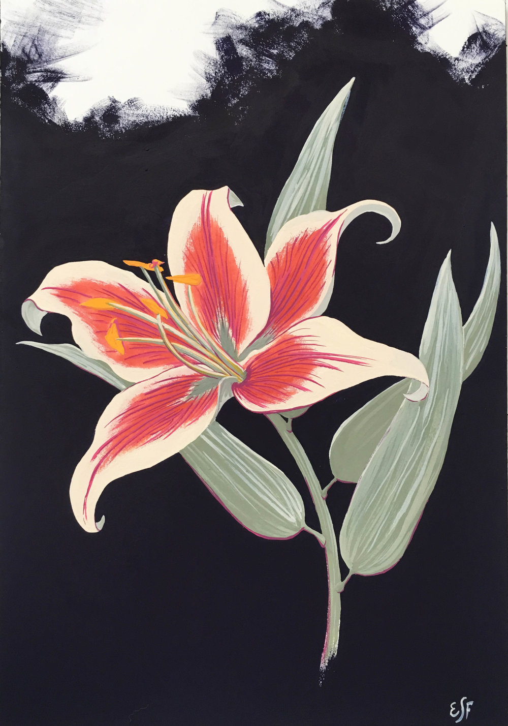 Day Lily, gouache, 11x7""