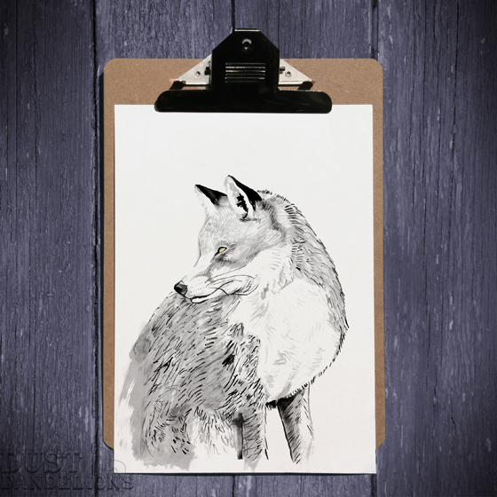 Sqaure-clip-board-fox-72dpi.jpg