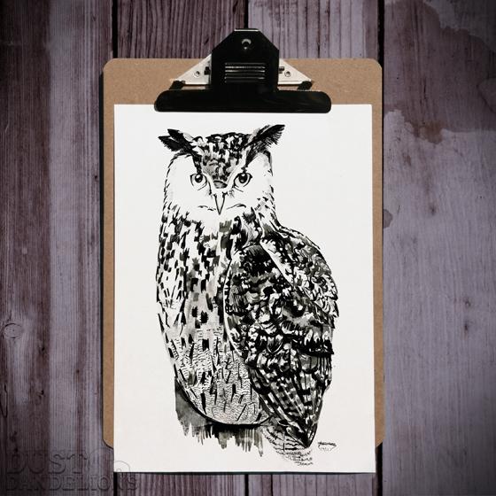 Sqaure-clip-board-owl-72dpi-.jpg