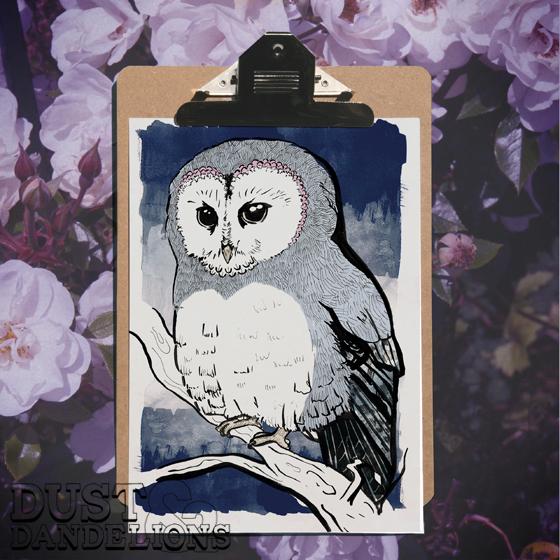 Sqaure-clip-board-w-bb-animals-owl-72dpi-.jpg
