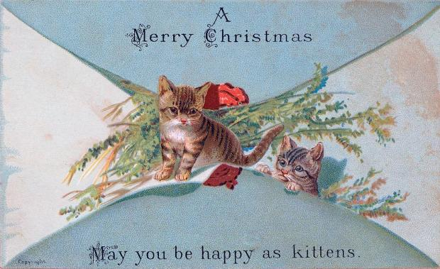 cat christmas card 2.jpg