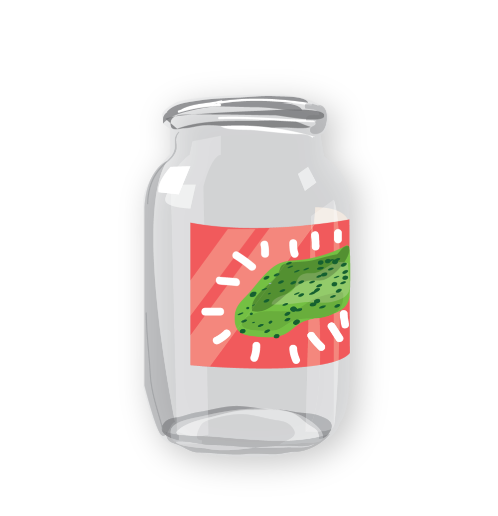 glass-jar-pickles-z-500.png