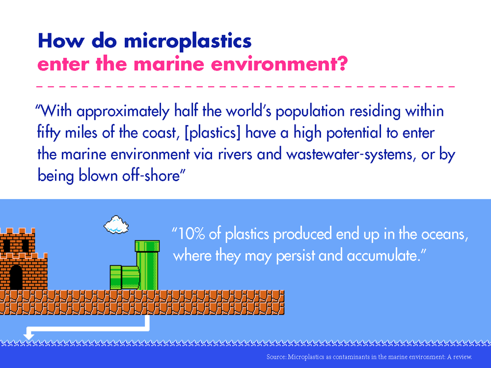 Dave_microplastics_presentation_Page_09.png