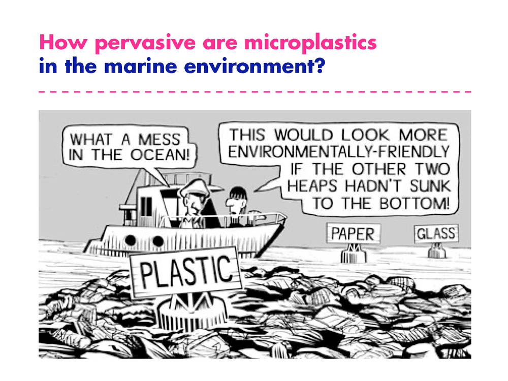 Dave_microplastics_presentation_Page_12.png