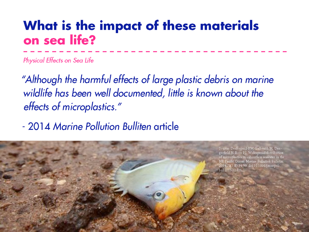 Dave_microplastics_presentation_Page_14.png